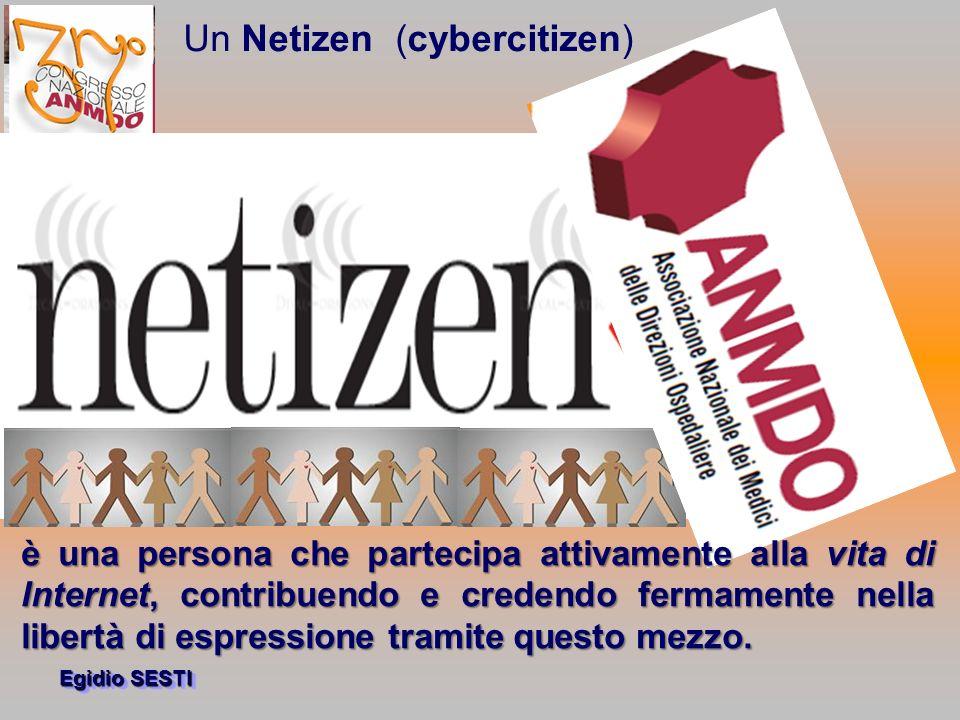 Un Netizen (cybercitizen)
