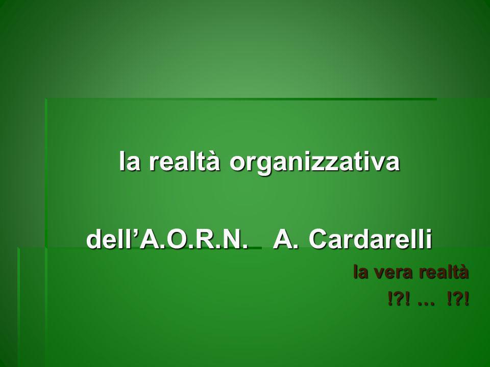 la realtà organizzativa dell'A.O.R.N. A. Cardarelli