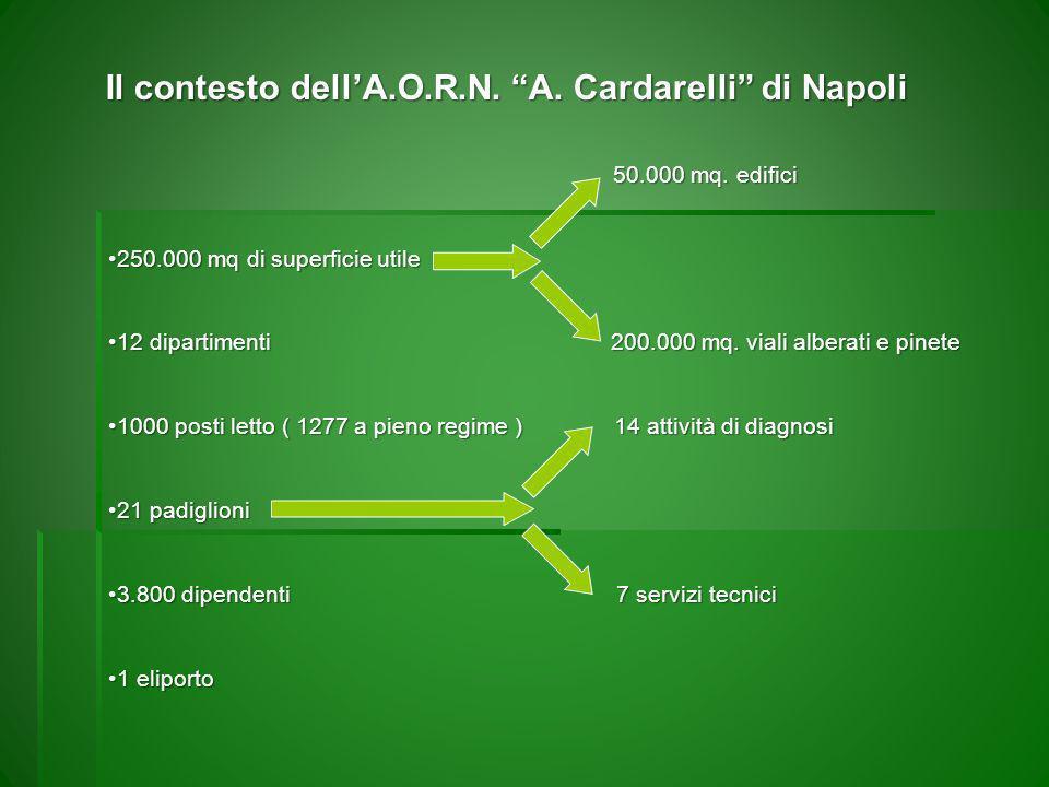 Il contesto dell'A.O.R.N. A. Cardarelli di Napoli