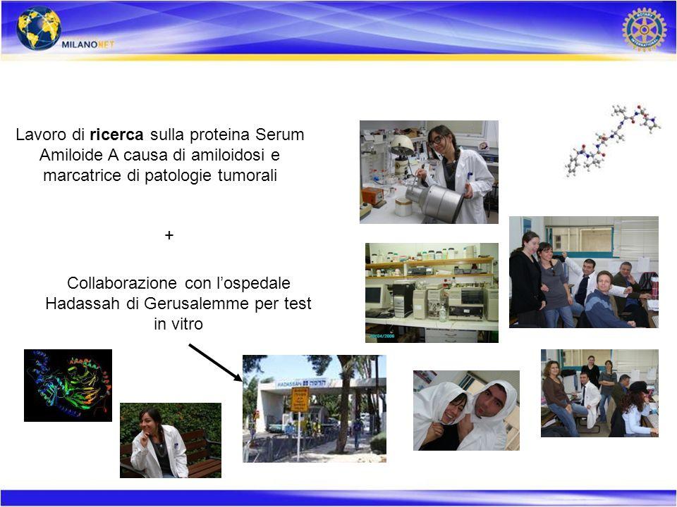 Lavoro di ricerca sulla proteina Serum Amiloide A causa di amiloidosi e marcatrice di patologie tumorali