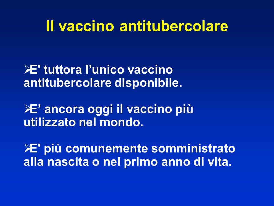Il vaccino antitubercolare