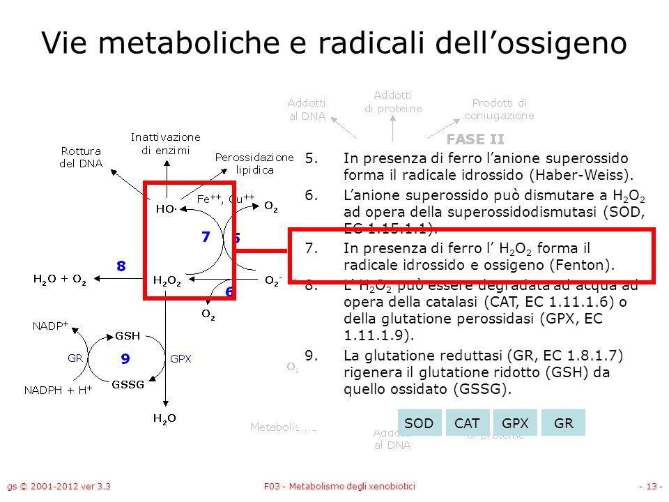 Vie metaboliche e radicali dell'ossigeno