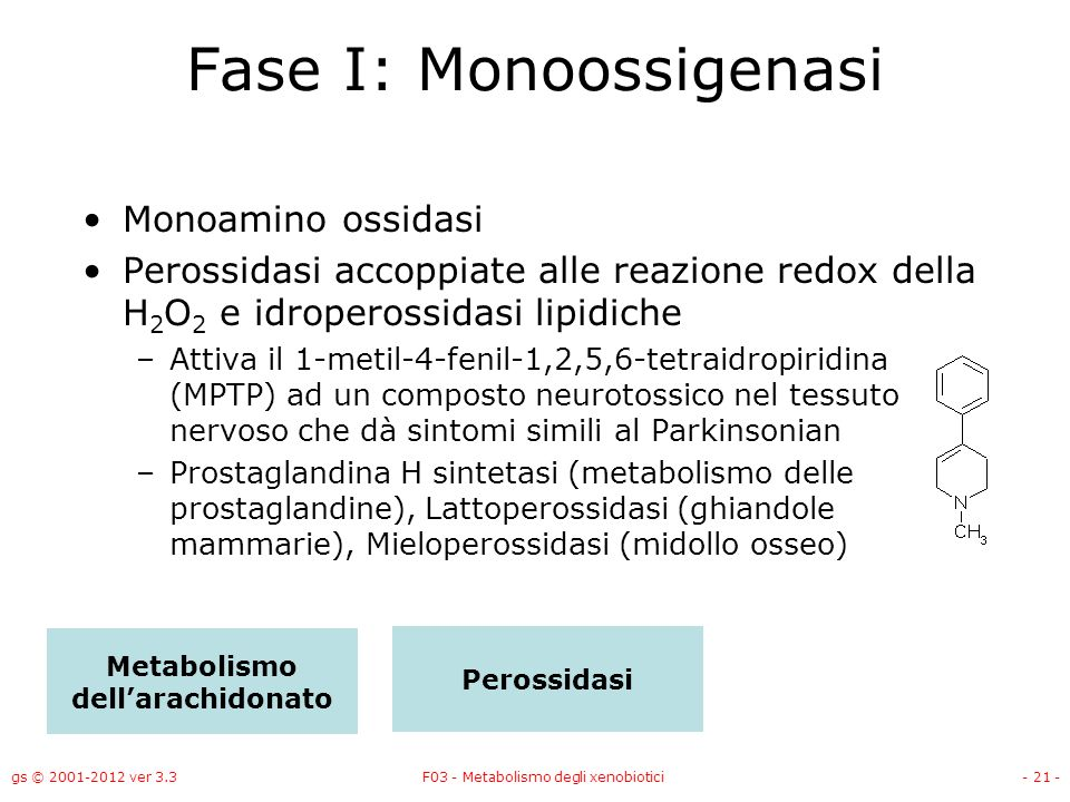 Fase I: Monoossigenasi