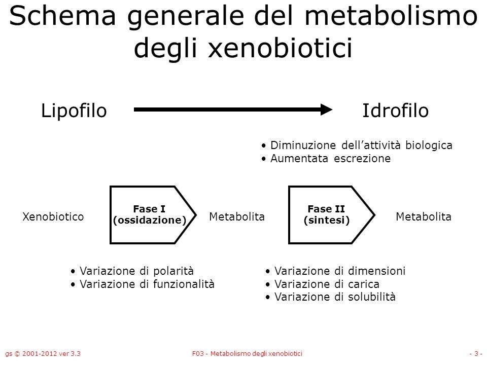 Schema generale del metabolismo degli xenobiotici