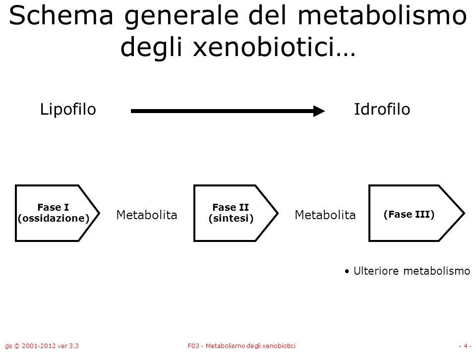 Schema generale del metabolismo degli xenobiotici…