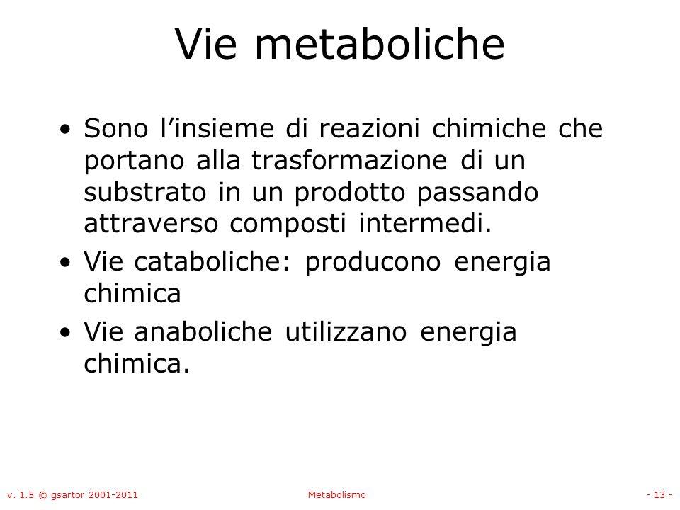 Vie metaboliche
