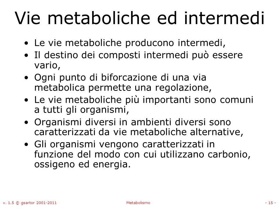Vie metaboliche ed intermedi