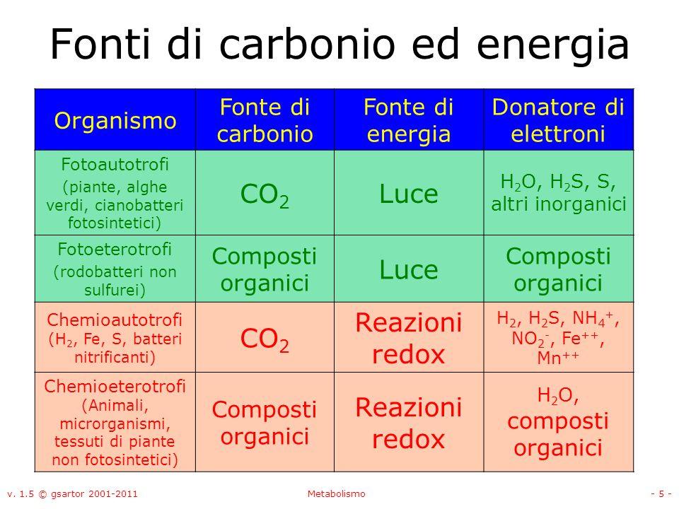 Fonti di carbonio ed energia