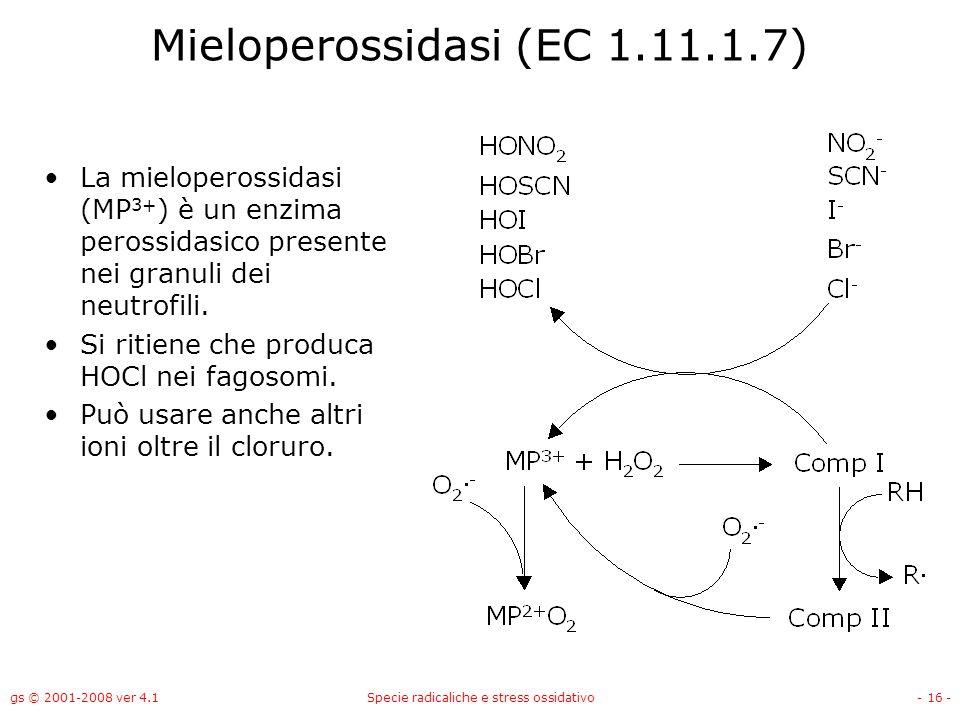 Mieloperossidasi (EC 1.11.1.7)