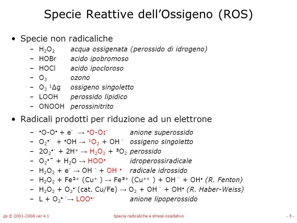 Specie Reattive dell'Ossigeno (ROS)