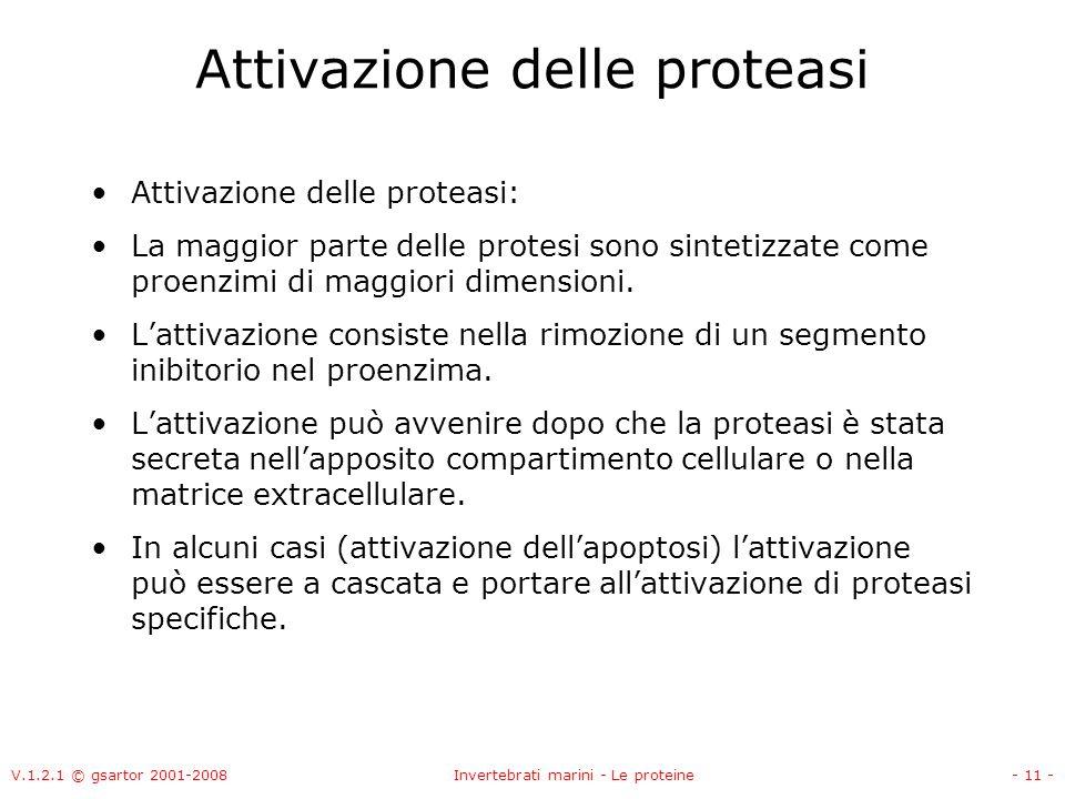 Attivazione delle proteasi
