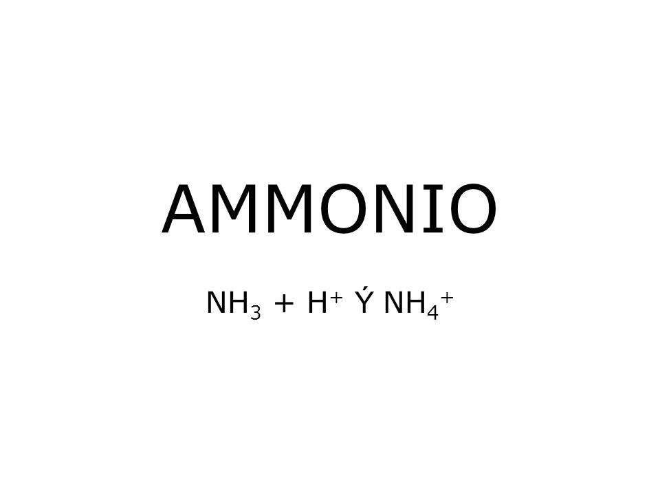 AMMONIO NH3 + H+ Ý NH4+