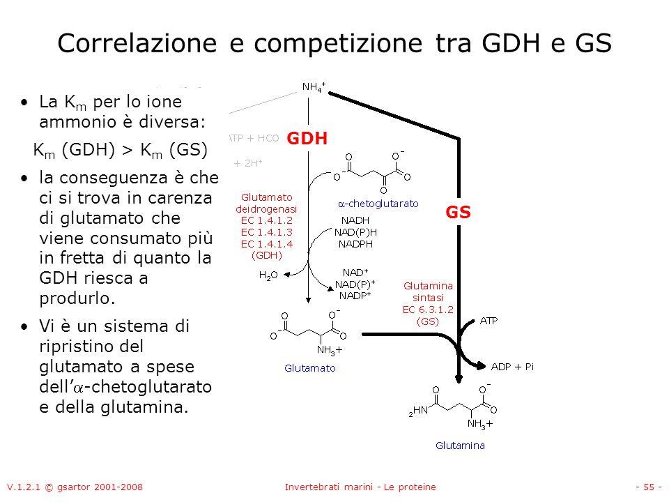 Correlazione e competizione tra GDH e GS