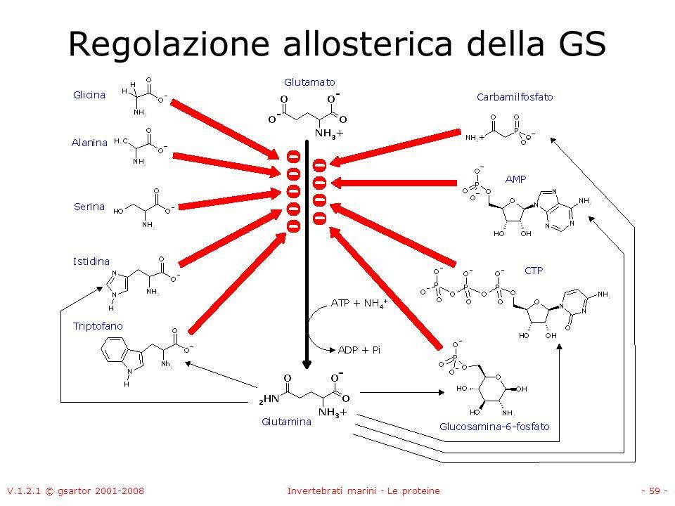 Regolazione allosterica della GS