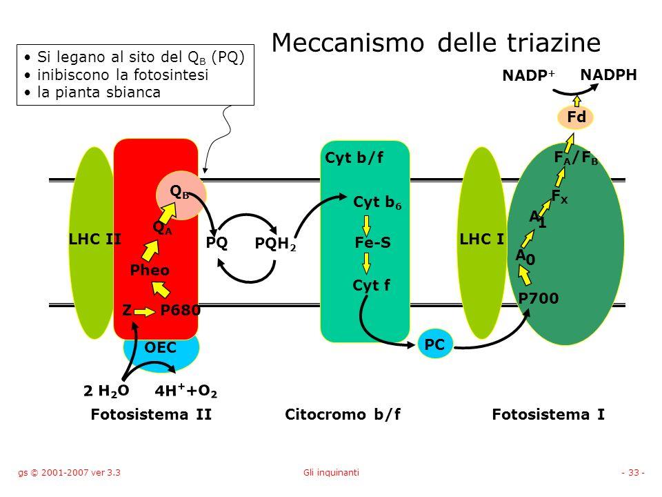 Meccanismo delle triazine