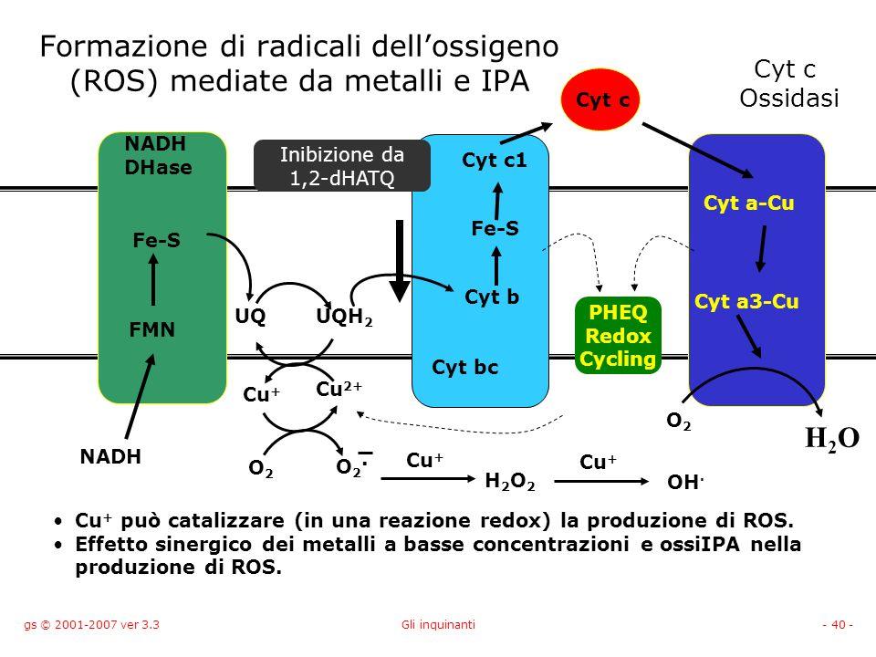 Formazione di radicali dell'ossigeno (ROS) mediate da metalli e IPA