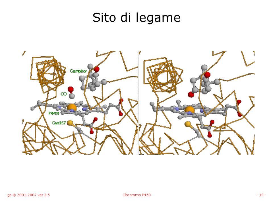 Sito di legame gs © 2001-2007 ver 3.5 Citocromo P450