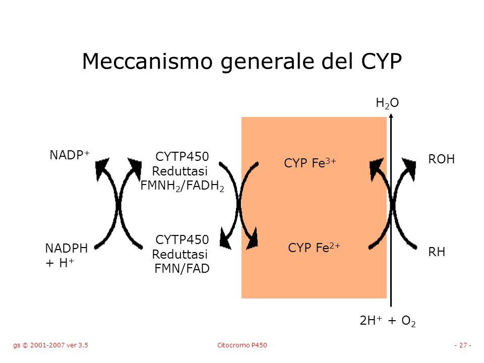 Meccanismo generale del CYP