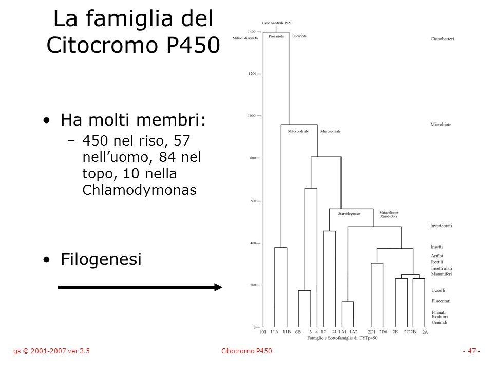 La famiglia del Citocromo P450