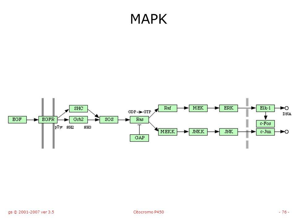MAPK gs © 2001-2007 ver 3.5 Citocromo P450