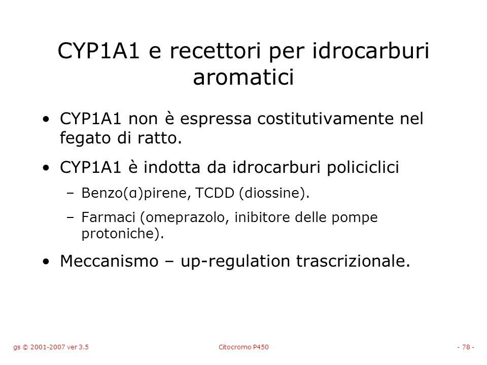CYP1A1 e recettori per idrocarburi aromatici