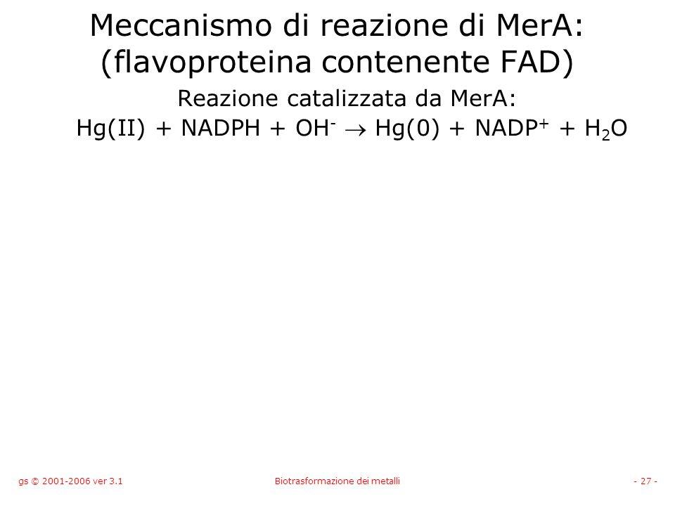 Meccanismo di reazione di MerA: (flavoproteina contenente FAD)