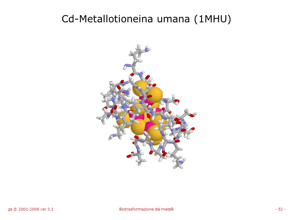 Cd-Metallotioneina umana (1MHU)