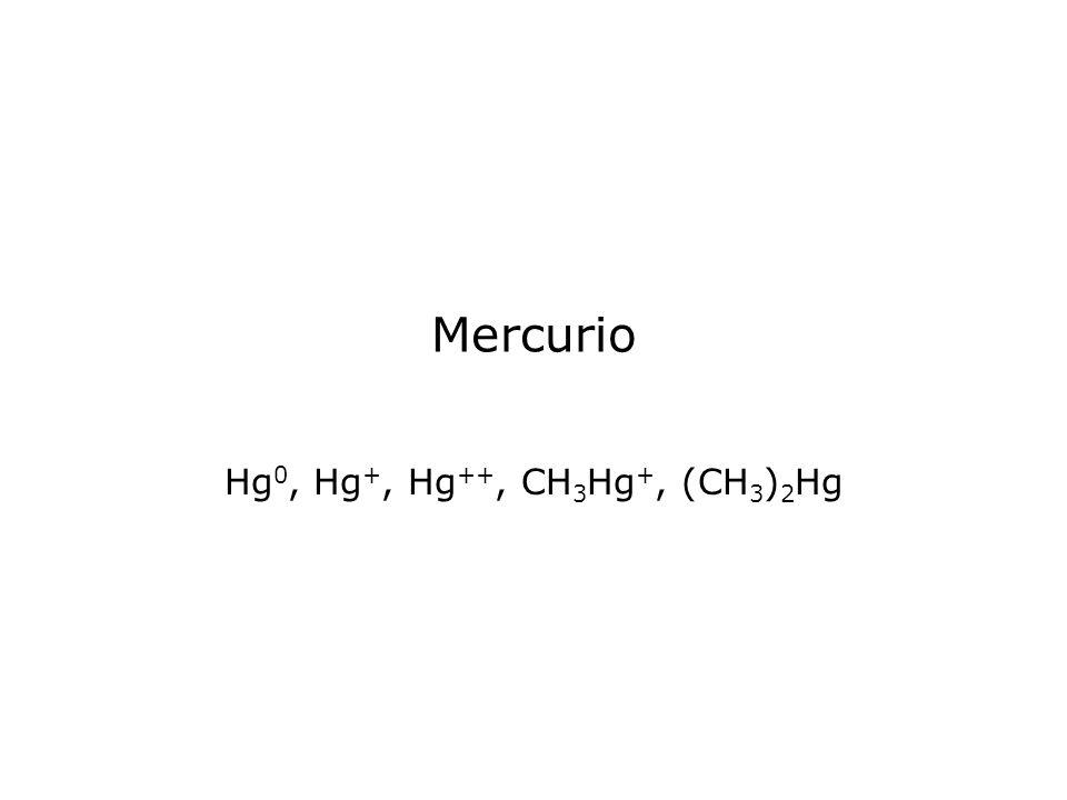 Hg0, Hg+, Hg++, CH3Hg+, (CH3)2Hg