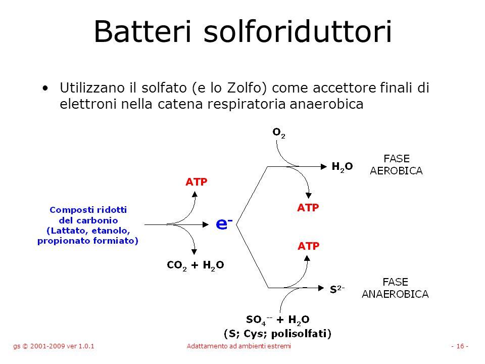 Batteri solforiduttori