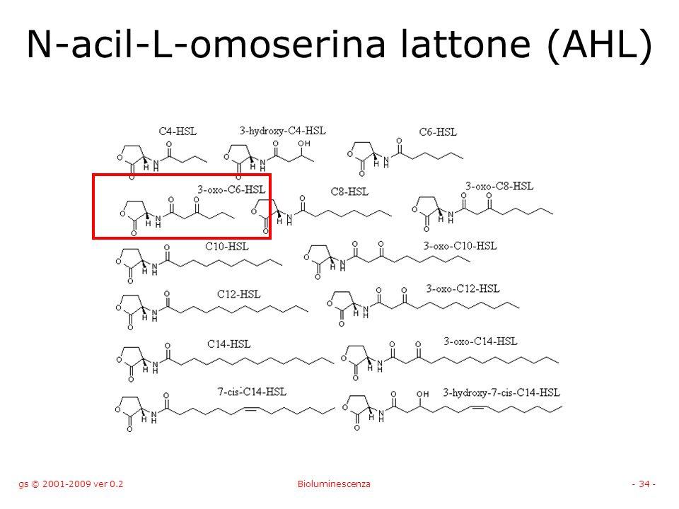 N-acil-L-omoserina lattone (AHL)