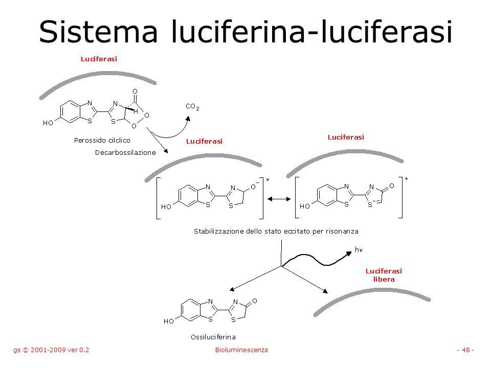 Sistema luciferina-luciferasi