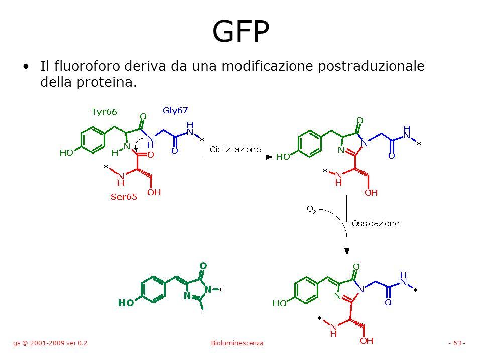 GFP Il fluoroforo deriva da una modificazione postraduzionale della proteina. gs © 2001-2009 ver 0.2.
