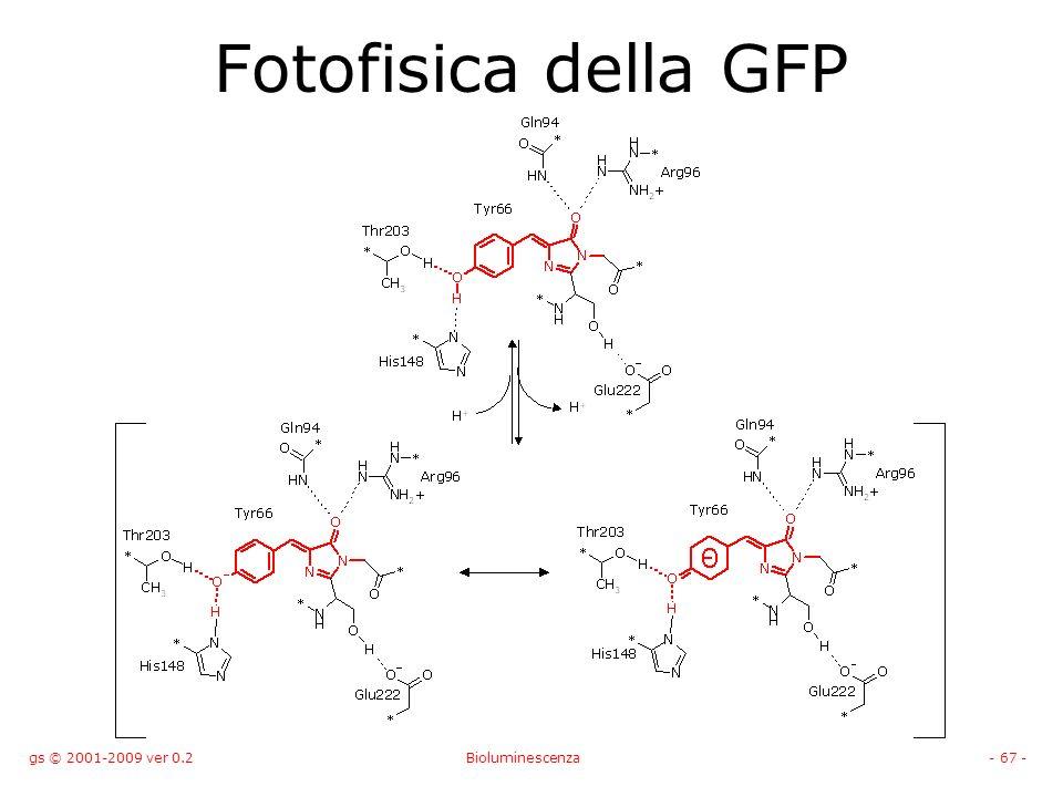 Fotofisica della GFP gs © 2001-2009 ver 0.2 Bioluminescenza
