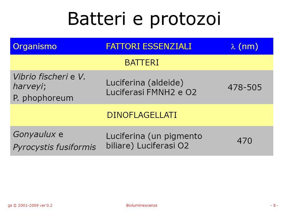 Batteri e protozoi Organismo FATTORI ESSENZIALI l (nm) BATTERI