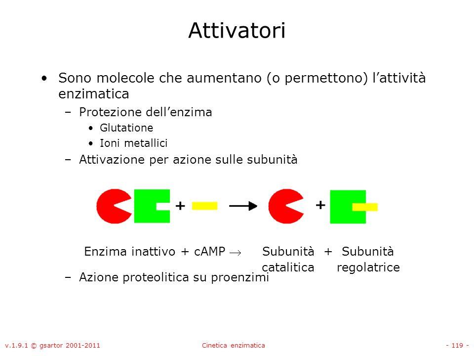 Attivatori Sono molecole che aumentano (o permettono) l'attività enzimatica. Protezione dell'enzima.