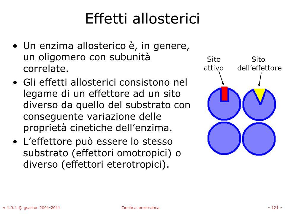Effetti allosterici Un enzima allosterico è, in genere, un oligomero con subunità correlate.