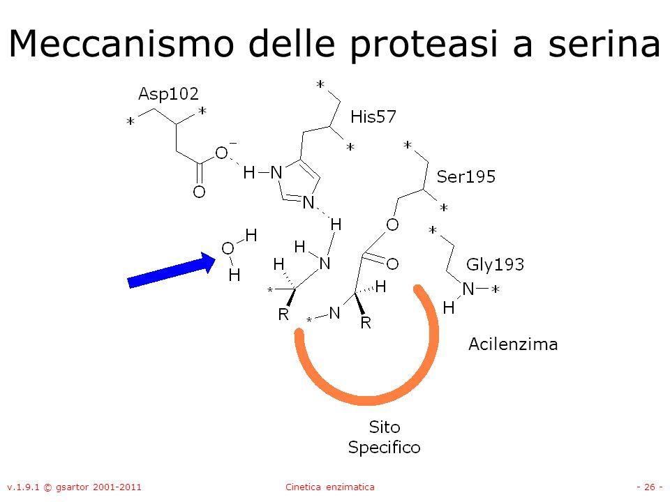 Meccanismo delle proteasi a serina