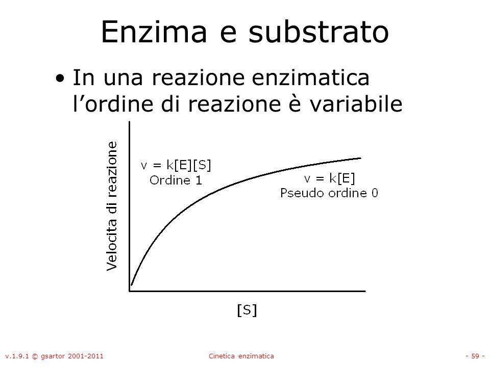 Enzima e substrato In una reazione enzimatica l'ordine di reazione è variabile. v.1.9.1 © gsartor 2001-2011.