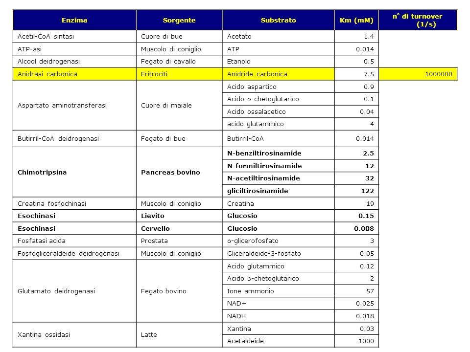 EnzimaSorgente. Substrato. Km (mM) n° di turnover (1/s) Acetil-CoA sintasi. Cuore di bue. Acetato. 1.4.