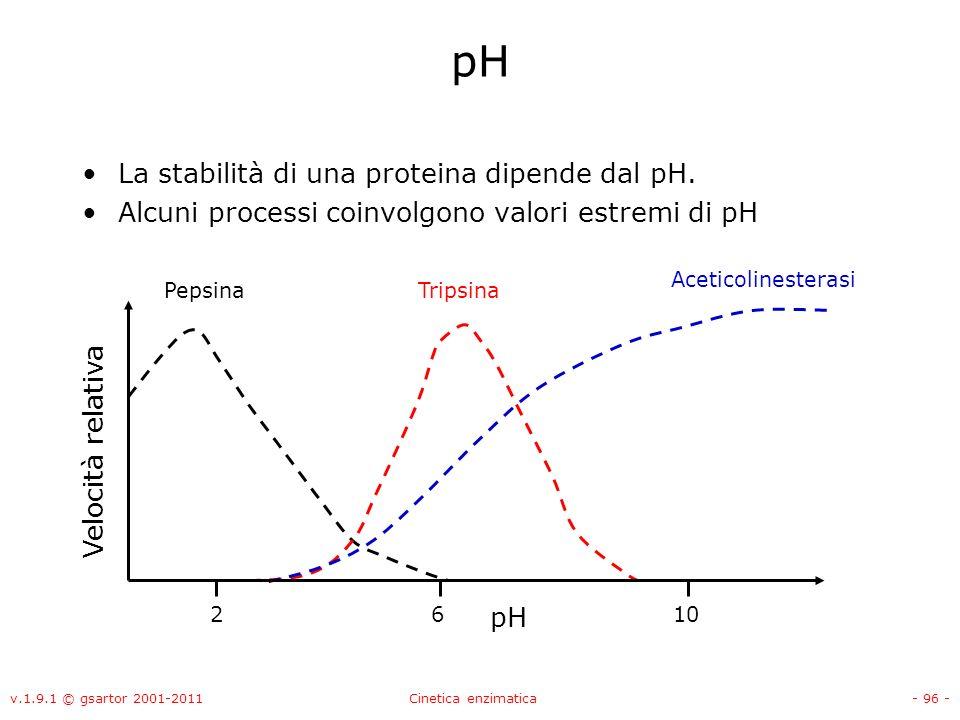 pH La stabilità di una proteina dipende dal pH.