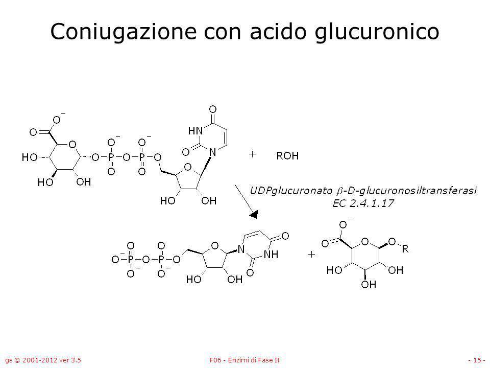 Coniugazione con acido glucuronico