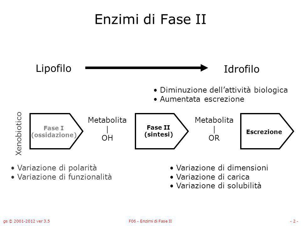 Enzimi di Fase II Lipofilo Idrofilo