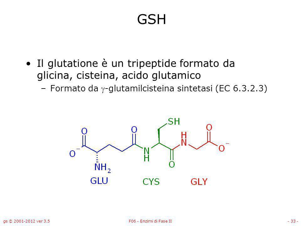 GSH Il glutatione è un tripeptide formato da glicina, cisteina, acido glutamico. Formato da -glutamilcisteina sintetasi (EC 6.3.2.3)