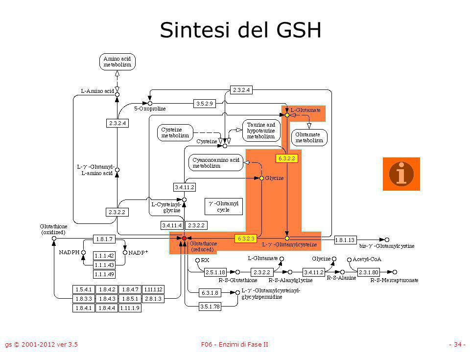 Sintesi del GSH gs © 2001-2012 ver 3.5 F06 - Enzimi di Fase II