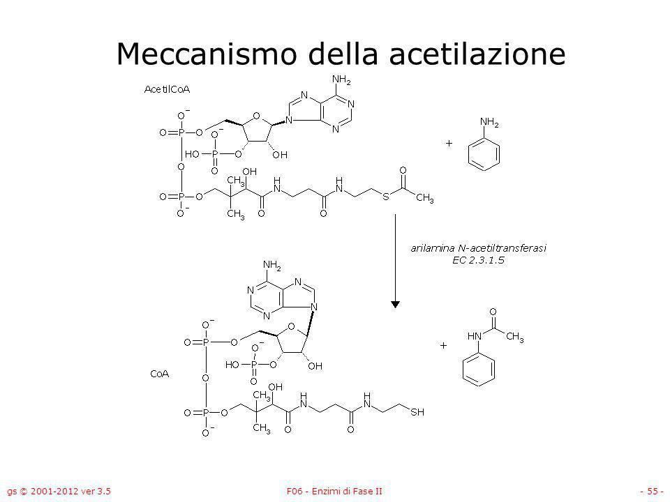 Meccanismo della acetilazione