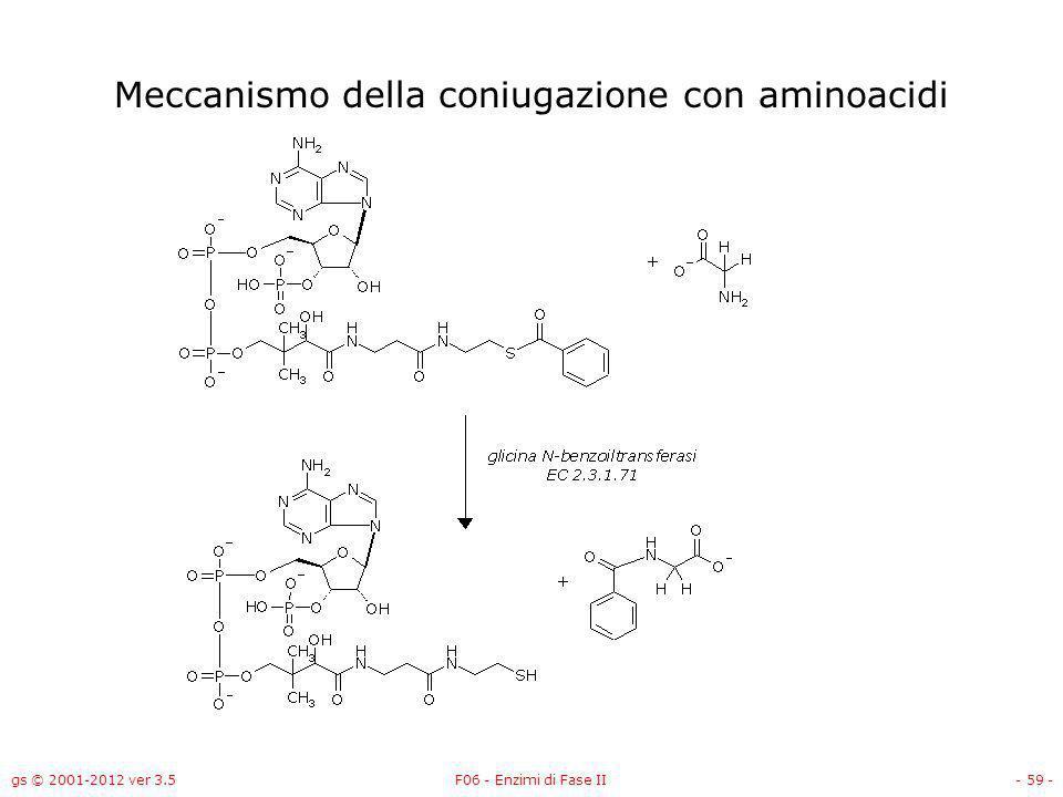 Meccanismo della coniugazione con aminoacidi