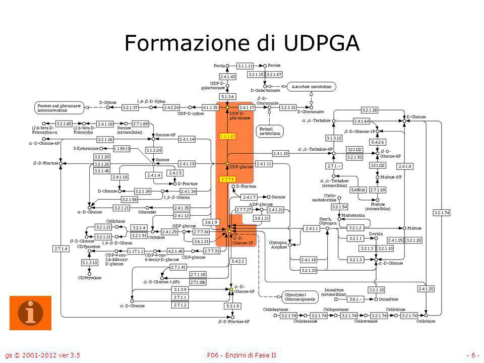 Formazione di UDPGA gs © 2001-2012 ver 3.5 F06 - Enzimi di Fase II
