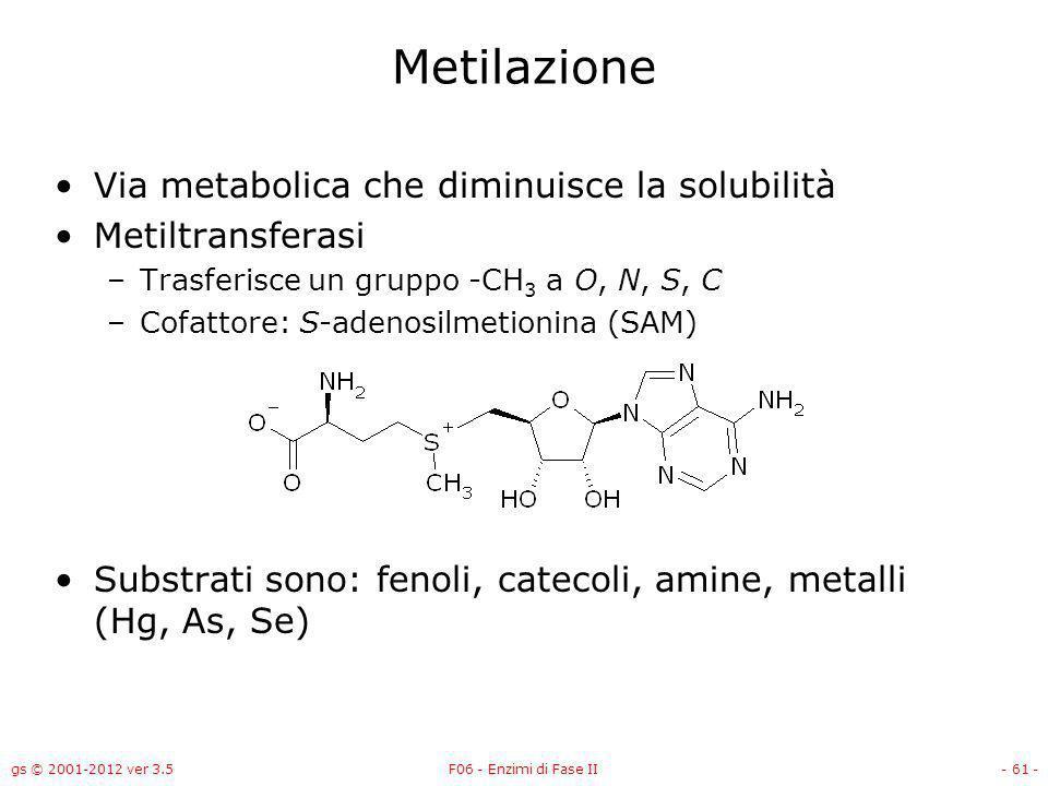 Metilazione Via metabolica che diminuisce la solubilità