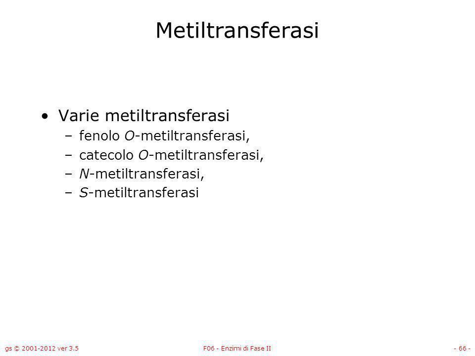 Metiltransferasi Varie metiltransferasi fenolo O-metiltransferasi,