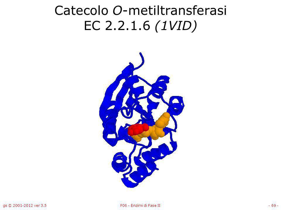 Catecolo O-metiltransferasi EC 2.2.1.6 (1VID)